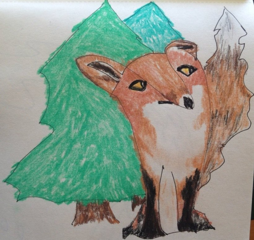fox in forest image.jpg
